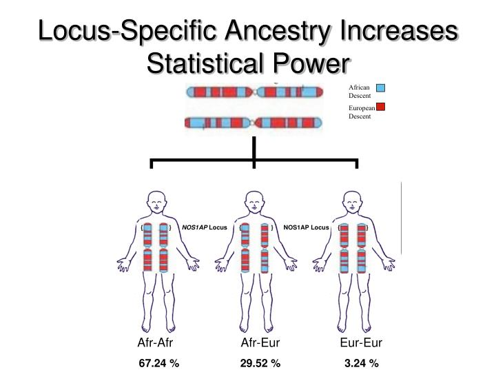 Locus-Specific Ancestry Increases Statistical Power