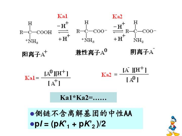 Ka1*Ka2=……