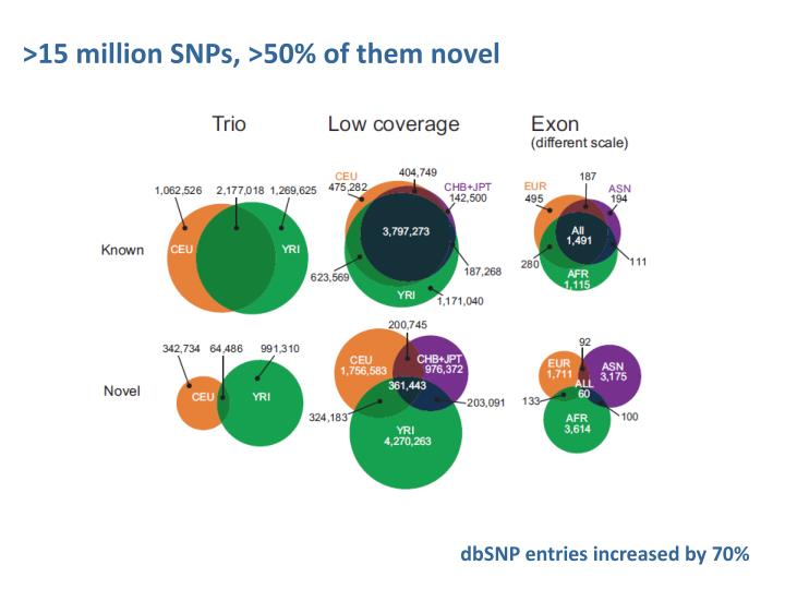 >15 million SNPs, >50% of them novel