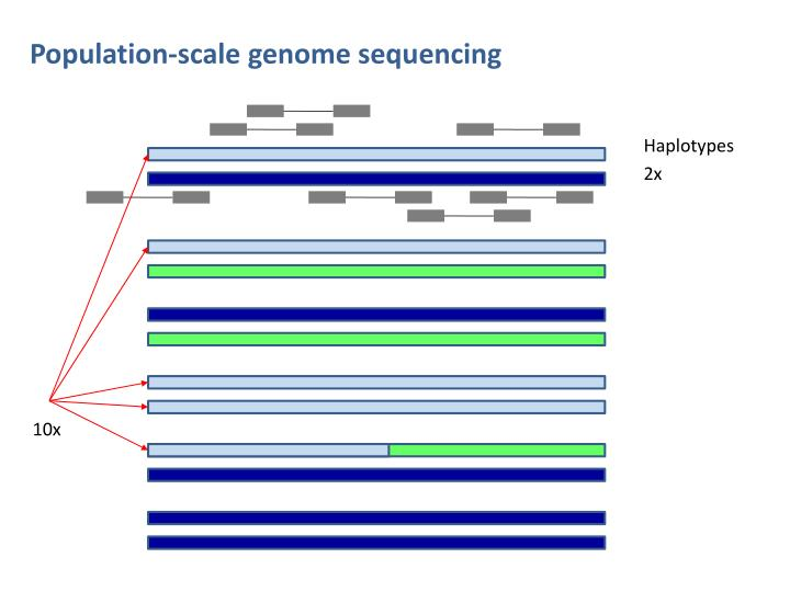 Population-scale genome sequencing