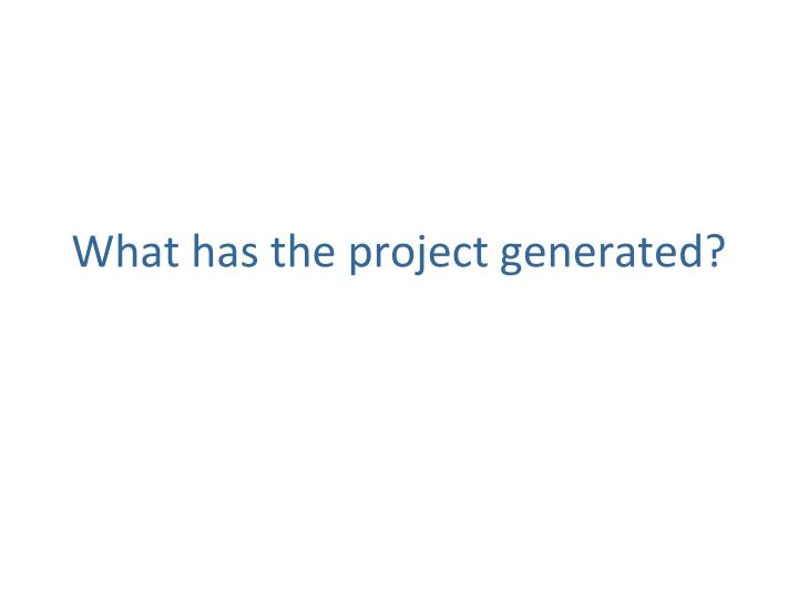 What has the project generated?