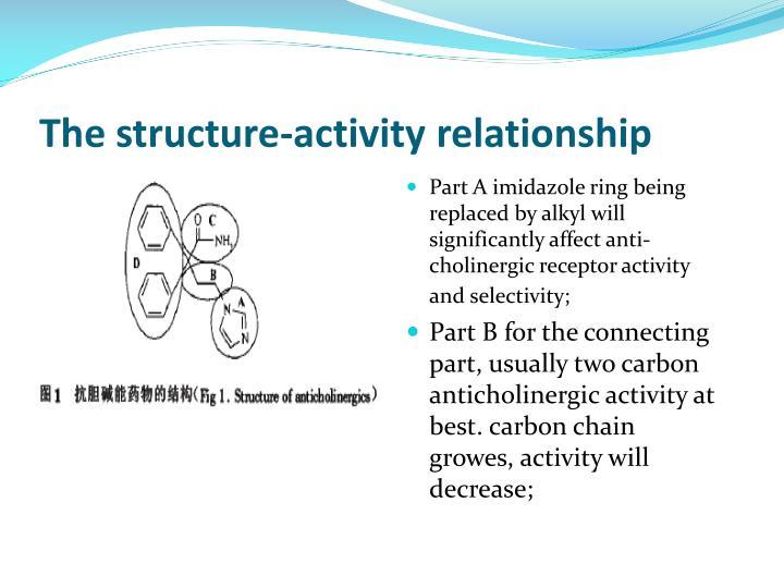 The structure-activity relationship