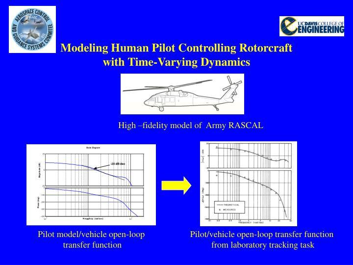 Modeling Human Pilot Controlling Rotorcraft