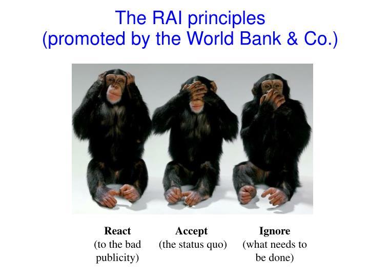 The RAI principles