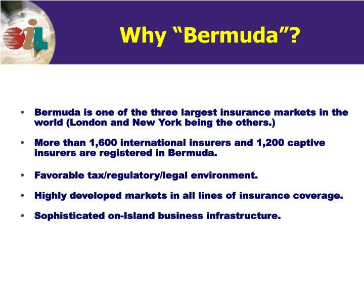 "Why ""Bermuda""?"