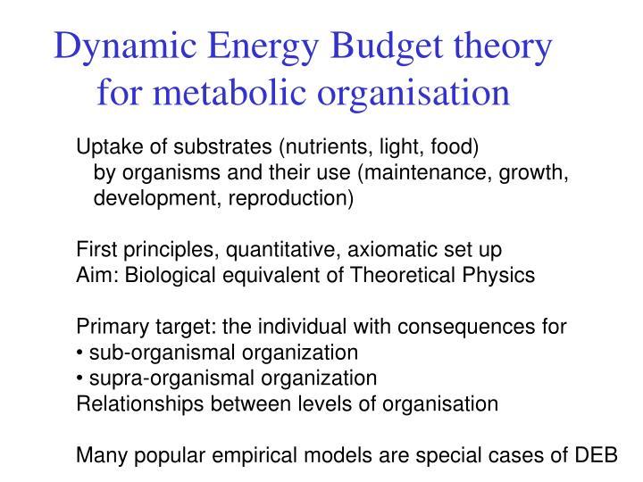 Dynamic Energy Budget theory