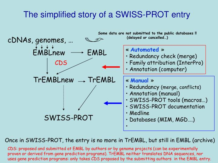 The simplified story of a SWISS-PROT entry