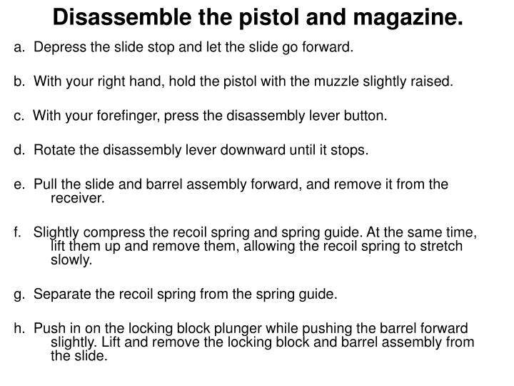 Disassemble the pistol and magazine.