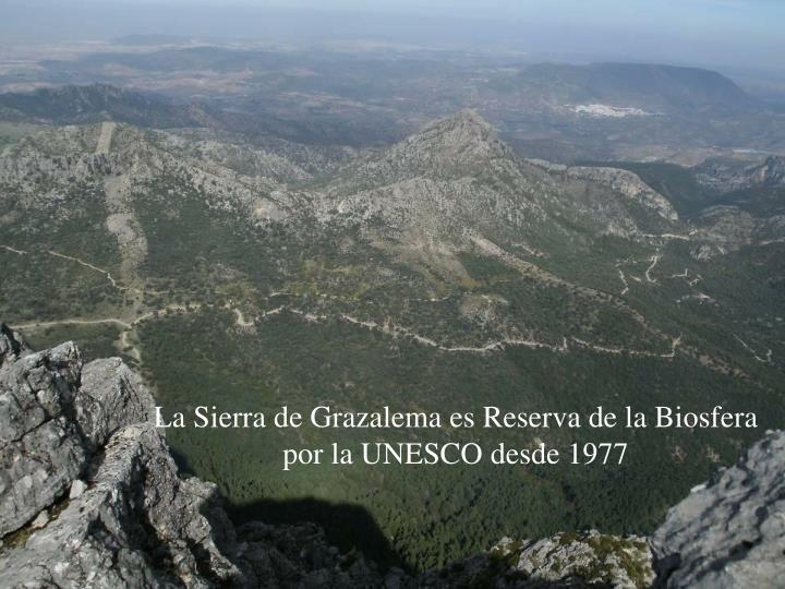 La Sierra de Grazalema es Reserva de la Biosfera por la UNESCO desde 1977