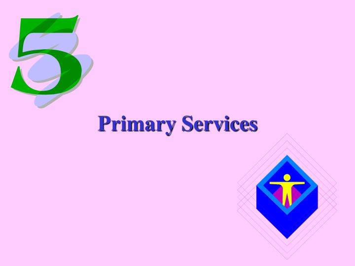 Primary Services