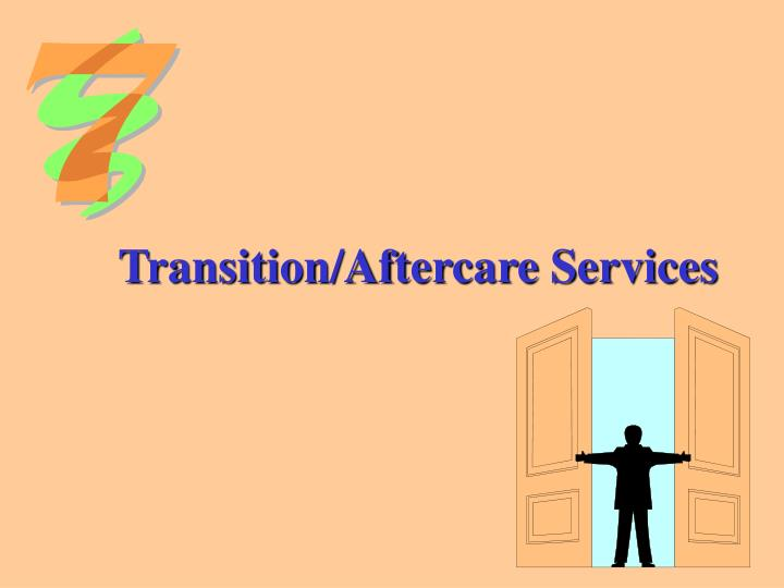 Transition/Aftercare Services
