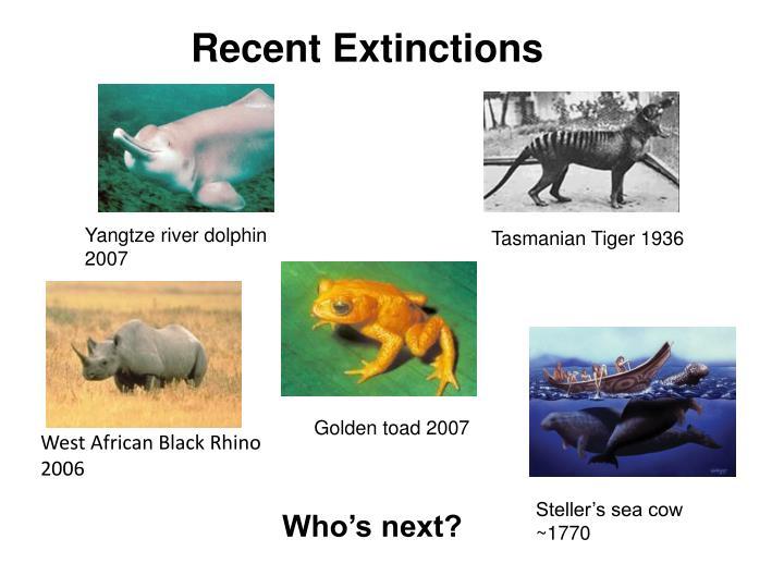 Recent Extinctions