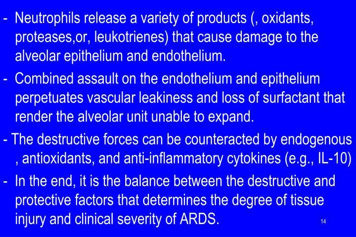 -  Neutrophils release a variety of products (, oxidants, proteases,or, leukotrienes) that cause damage to the alveolar epithelium and endothelium.