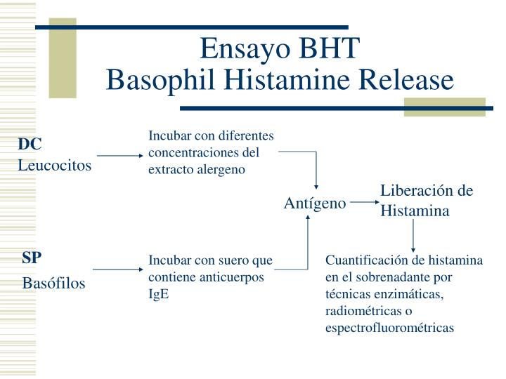 Ensayo BHT