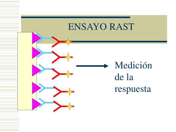 ENSAYO RAST