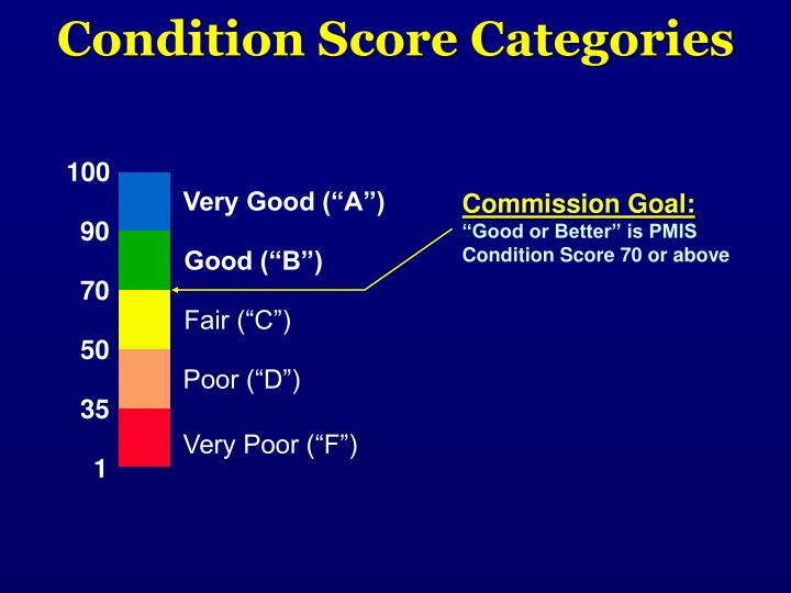 Condition Score Categories