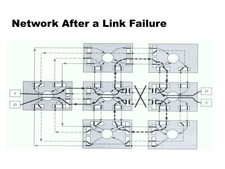 Network After a Link Failure
