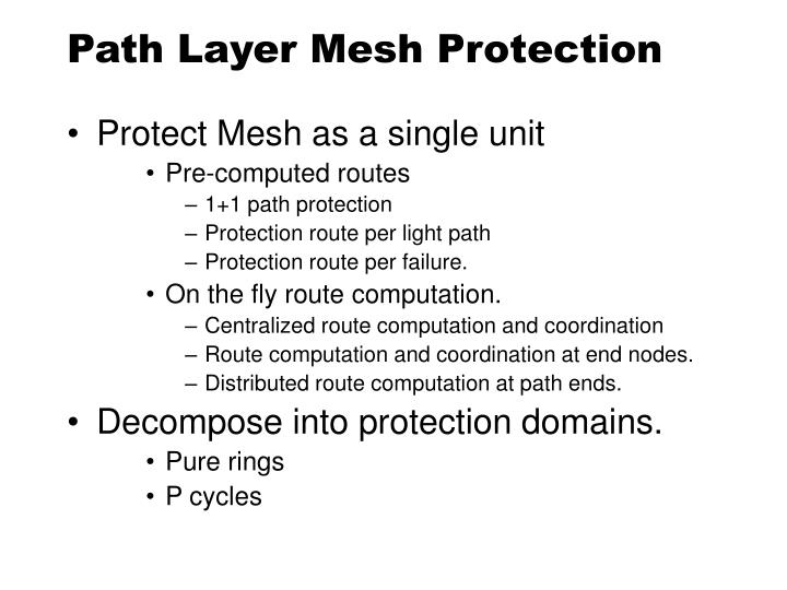 Path Layer Mesh Protection
