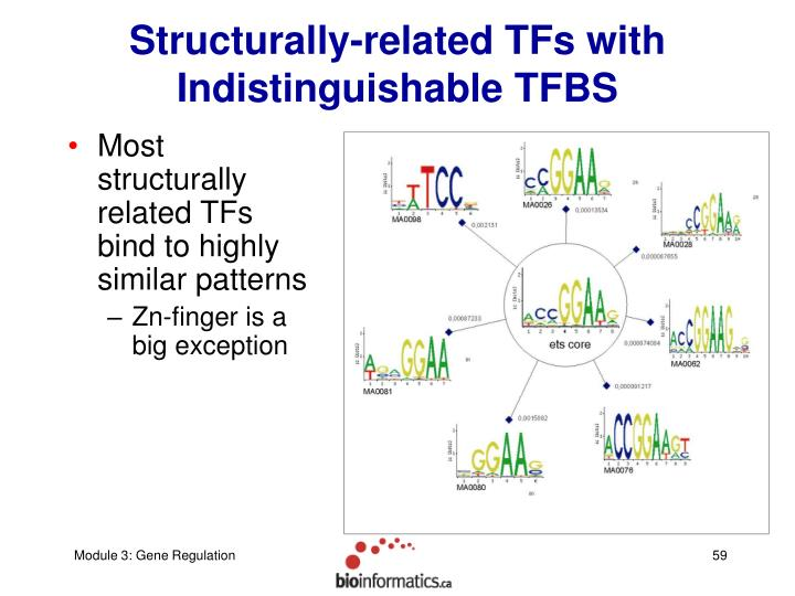 Structurally-related TFs with Indistinguishable TFBS