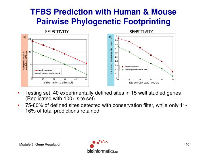 TFBS Prediction with Human & Mouse Pairwise Phylogenetic Footprinting