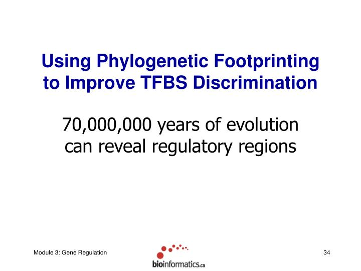Using Phylogenetic Footprinting to Improve TFBS Discrimination
