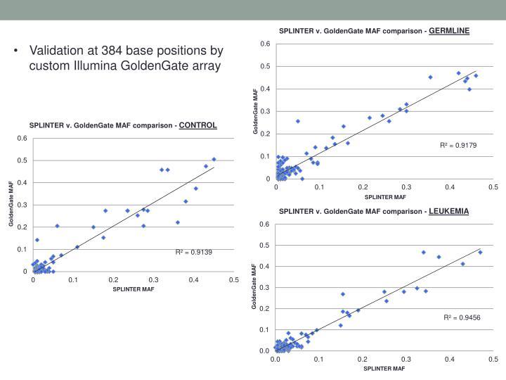 Validation at 384 base positions by custom Illumina GoldenGate array
