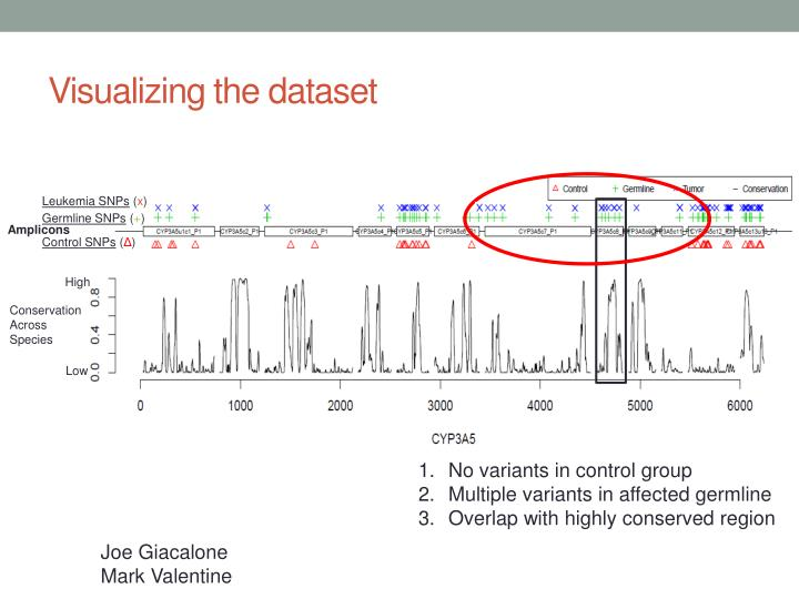 Visualizing the dataset