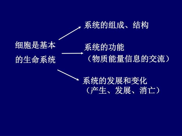 系统的组成、结构