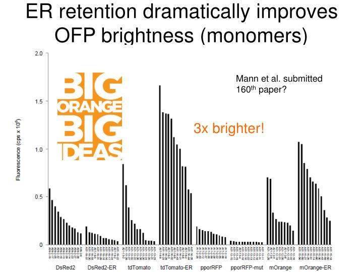 ER retention dramatically improves OFP brightness (monomers)