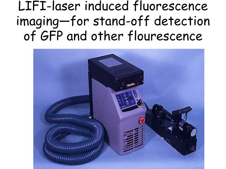 LIFI-laser induced fluorescence imaging—for stand-off detection of GFP and other flourescence