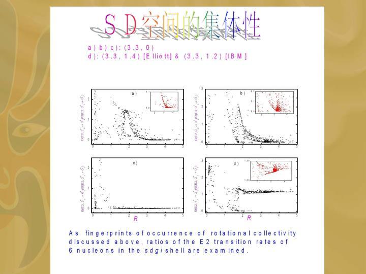 SD空间的集体性