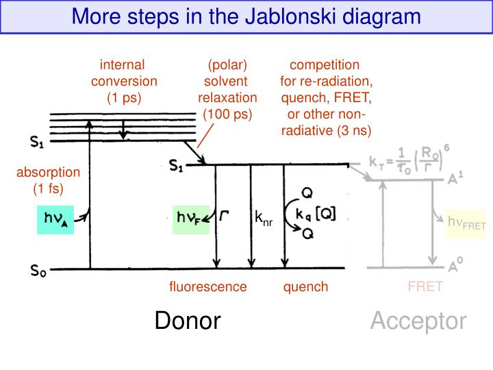 More steps in the Jablonski diagram