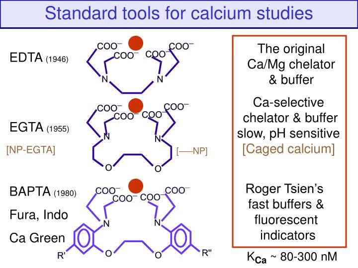 Tools for calcium studies