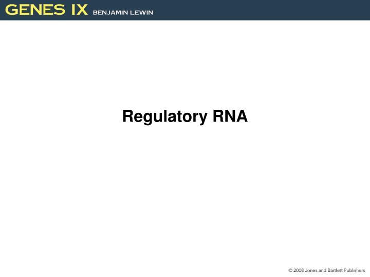 Regulatory RNA