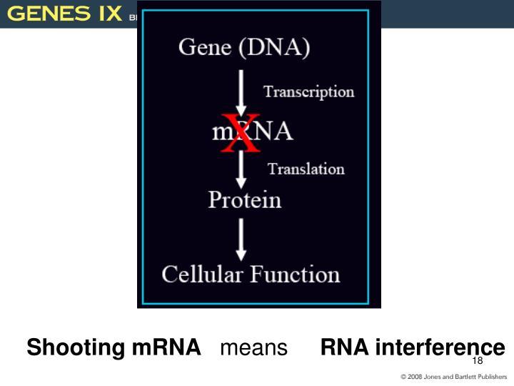 Shooting mRNA