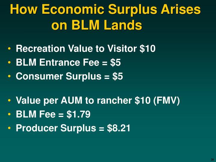 How Economic Surplus Arises on BLM Lands