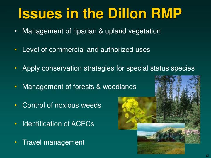 Issues in the Dillon RMP