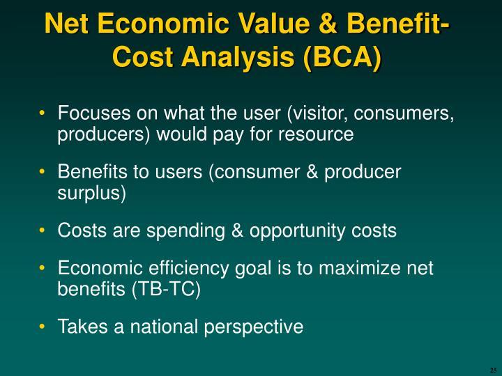 Net Economic Value & Benefit-Cost Analysis (BCA)