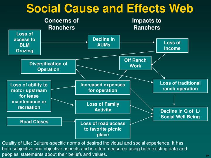 Social Cause and Effects Web