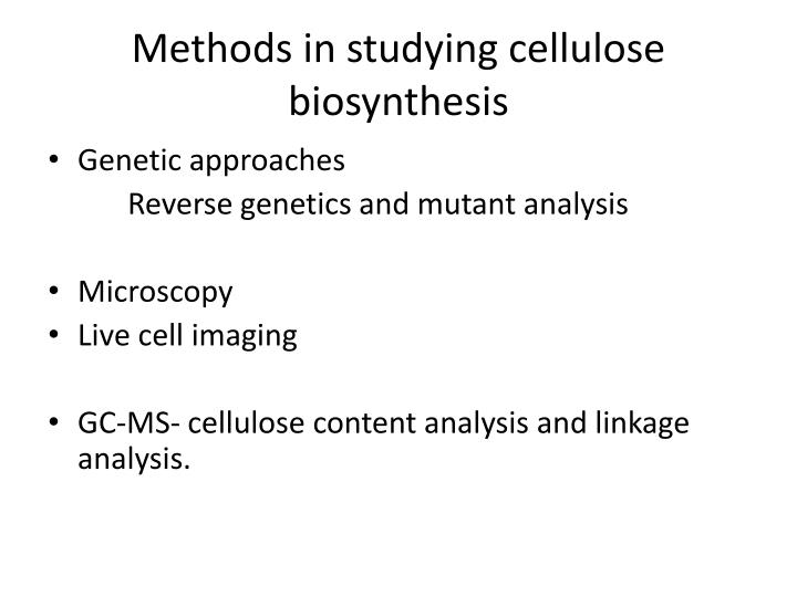 Methods in studying cellulose biosynthesis