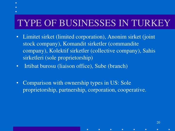 TYPE OF BUSINESSES IN TURKEY