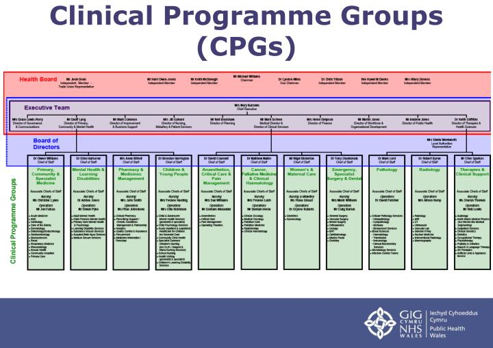 Clinical Programme Groups (CPGs)