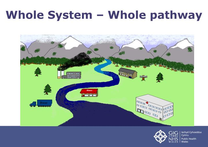 Whole System – Whole pathway