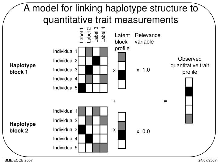 A model for linking haplotype structure to quantitative trait measurements