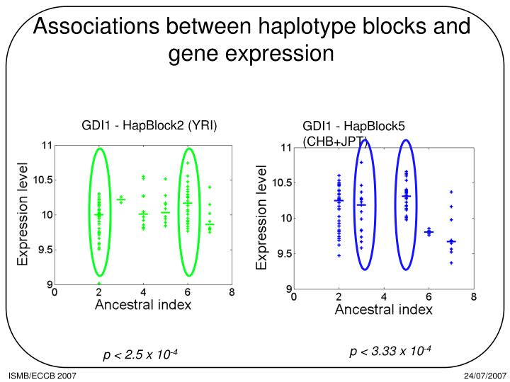 Associations between haplotype blocks and gene expression