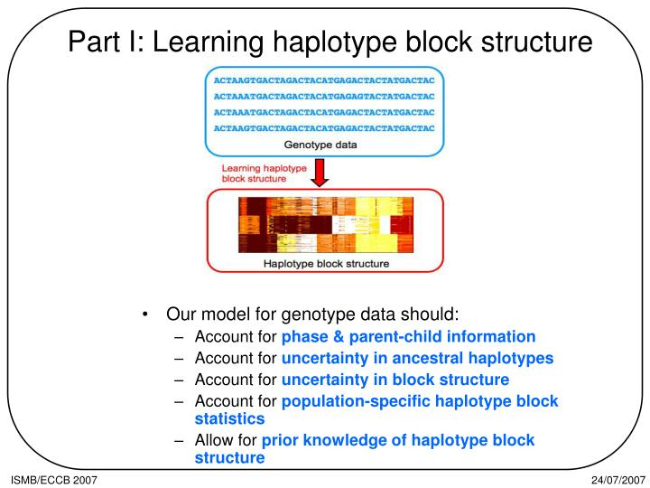 Part I: Learning haplotype block structure