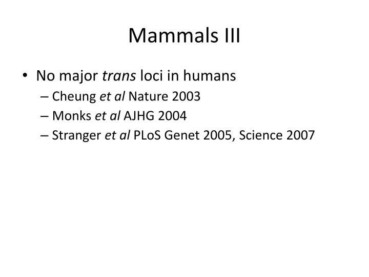 Mammals III