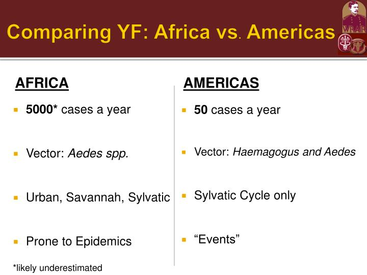Comparing YF: Africa vs