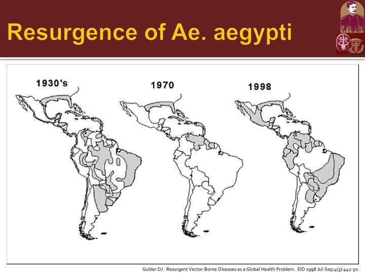 Resurgence of Ae. aegypti
