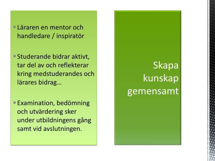 Läraren en mentor och handledare / inspiratör